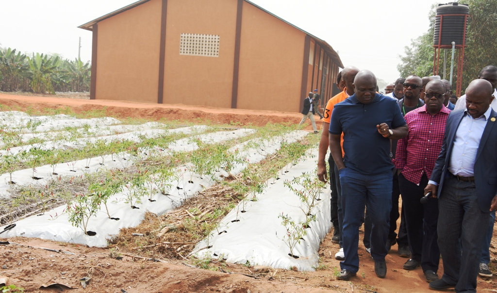 Lagos State Governor, Mr. Akinwunmi Ambode (left); Attorney General & Commissioner for Justice, Mr. Adeniji Kazeem (middle) and Permanent Secretary, Ministry of Agriculture, Dr. Shakirudeen Olayiwola (right) during the Governor's inspection of the Agric-YES (Songai Model Farm) at Avia-Igborosun in Badagry, Lagos