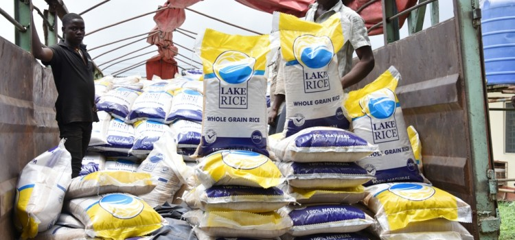 Eid-El-Kabir:  70 Trailer Load Of Lake Rice Arrive Lagos