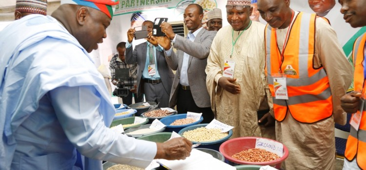 Lagos At The Forefront Of Boosting Agro-Business