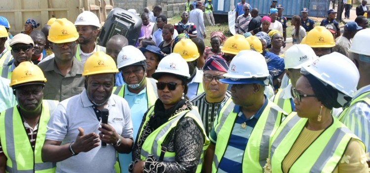 Lagos To Complete Largest Rice Mill In Sub Saharan Africa Early 2019