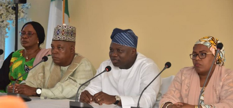 APC Primaries: Submit To Party's Supremacy Governor Ambode And Governor Shettima Urge Aggrieved Aspirants In Lagos, Ogun